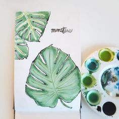 Flight of Carousels Monstera Leaves, watercolor, plant drawing, sketchbook