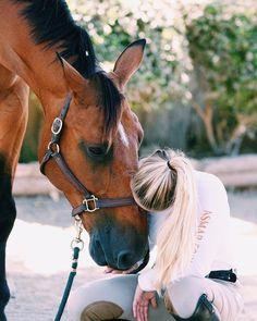 Pony Kisses, Connection, Equestrian, @carolineequestrian