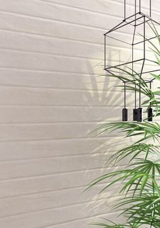Wall tiles range Douai in size, is a white body tile with concretes like finish. White Bodies, Wall Tiles, Concrete, Curtains, Pasta, Home Decor, Collection, Environment, Cooking