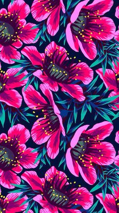 Pretty pink flowers. iPhone wallpaper