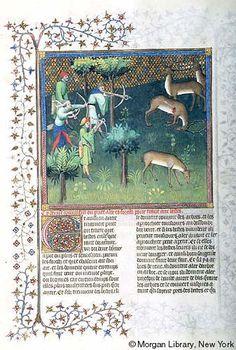 Livre de la chasse - Medieval & Renaissance Manuscripts Online - The Morgan Library & Museum