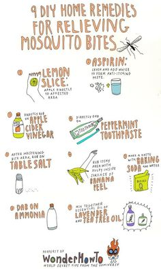 To: 9 DIY Home Remedies for Relieving Itchy Mosquito Bites 9 DIY remedies for mosquito bites.apple cider vinegar can do DIY remedies for mosquito bites.apple cider vinegar can do anything! Mosquito Bite Relief, Bug Bite Relief, Stop Mosquito Bite Itch, Treatment For Mosquito Bites, Bug Bite Treatment, Mosquito Trap, Mosquito Control, Mosquito Killer, Pest Control