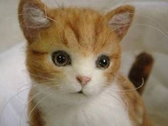 Needle felted cat. Sachie3255 - wow are these really needlefelt? they are so realistic!