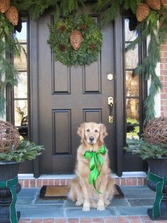 Planter & front door decorating ideas nearing Christmas that could stay into the new year~