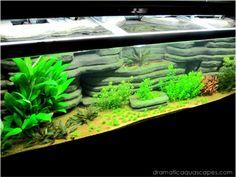Dramatic AquaScapes - DIY Aquarium Background - Andrew Coats in the Community Spotlight Aquarium Setup, Diy Aquarium, Aquarium Ideas, Hermit Crab Tank, 10 Gallon Fish Tank, Aquarium Backgrounds, Background Diy, Fish Care, One Fish