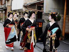 Kikumaru, Kikune, Kikuyu, Kikutsuru and Kikuno