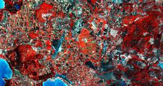 Northwest Sardinia. (2015.07.03) In false color from ESA's Sentinel-2A satellite. The red shows vegetation, and the brighter red healthier vegetation. Agricultural fields dominate the land, with a large area of vineyards at the image center. Alghero-Fertilia Airport is just left of center, and the port of Ferilia directly to its south. (Credit: Copernicus data (2015)/ESA)