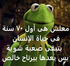 معاكم المرحوم من العالم الآخر Arabic Jokes, Arabic Funny, Funny Arabic Quotes, Funny Qoutes, Jokes Quotes, Funny Texts, Funny Picture Jokes, Funny Pictures, Funny Science Jokes