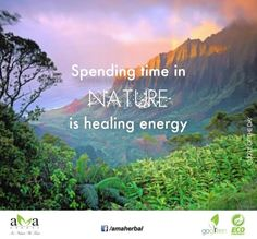 True! Spending time in nature is healing energy.#Quoteoftheday. Click here: https://www.facebook.com/amaherbal/photos/a.283777945111081.1073741829.274434279378781/497963207025886/?type=1&theater…