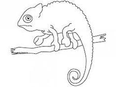Image result for chameleon outline