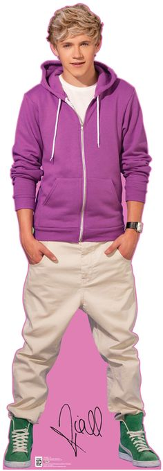 One Direction Niall Lifesized Stand Up