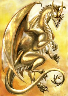 Golden dragon by *IsisMasshiro on deviantART