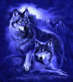 art wolf - Round Diamond Embroidery Diamond Mosaic Snow Owl and Wolf Anime Wolf, Pet Anime, Beautiful Creatures, Animals Beautiful, Cute Animals, Wolf Artwork, Wolf Painting, Fantasy Wolf, Wolf Spirit Animal