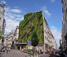 The Oasis of Aboukir by Patrick White for Paris Design Week - L'Oasis D'Aboukir is a green wall by botanist and researcher Patrick Blanc, which covers a building facade in the second arrondissement of Paris. Green Architecture, Landscape Architecture, Landscape Design, Green Facade, Concrete Facade, Concrete Walls, Flower Tower, Paris Design, Vertical Gardens