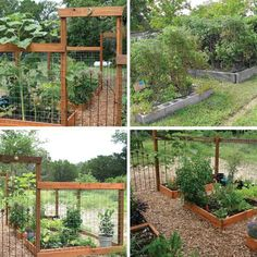 A No-Hassle Garden: Square Foot Gardening