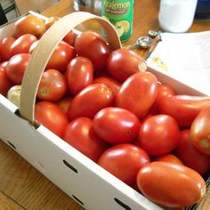 Canning Tomatoes = Summertime all Year Long! Roma tomatoes best for canning! Canning Tips, Home Canning, Canning Recipes, Canning Tomatoes, Roma Tomatoes, Tasty, Yummy Food, Yummy Recipes, Recipies