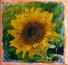 ZNE Mixed Media Collage Art by ruby -Texas Sunflower Yellow - 3x3 Canvas…