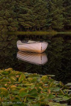 silent Reflection, Loch Rusky, Trossachs., Scotland by Karl Williams