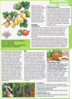 - Dieta Detox, Thyroid, Home And Garden, Gardening, Health, Food, Catalog, Health Care, Lawn And Garden