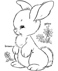 Easter Bunny Coloring Pages   BlueBonkers - Cute bunny free printable Easter Bunny coloring page activity sheets