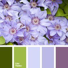 Color Palette #3403