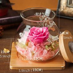 Preserved Rose Light Bottle from Apollo Box Fish Bowl Centerpiece Wedding, Fishbowl Centerpiece, Baptism Centerpieces, Centrepieces, Beauty And Beast Rose, Crafts With Glass Jars, Quince Invitations, Floating Flowers, Preserved Roses