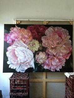 gallery - marcella kaspar