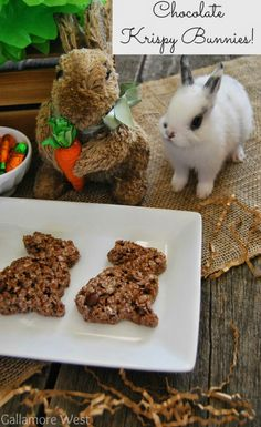 Chocolate Krispy Bunnies! The perfect Easter Treat-- Tatertots and Jello