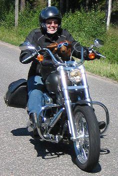 10 motorcycle insurance louisville ky ideas motorcycle motorcycle insurance quote louisville ky pinterest