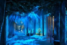 Lights cast different colours on this wintery scene throughout the day, transforming it from sunrise to night time in Marc Newson and Jony Ive Claridge's installation.
