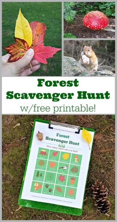FREE printable Forest or Hiking Scavenger Hunt - great activity for a walk in the woods or camping with kids and family! Scavenger Hunt List, Photo Scavenger Hunt, Scavenger Hunt For Kids, Fun Fall Activities, Camping Activities, Outdoor Activities, Camping Ideas, Camping Checklist, Camping Crafts