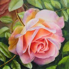 Pink Rose Watercolor Painting - Paintings in oil and watercolor - Watercolor DVDs and Free Tutorials  http://www.dorisjoa.com/2010/06/pink-rose-watercolor-painting/