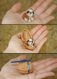 Tiny Needle Felted Bulldog Puppy Dog in a nutshell by amber-rose-creations.deviantart.com on @deviantART