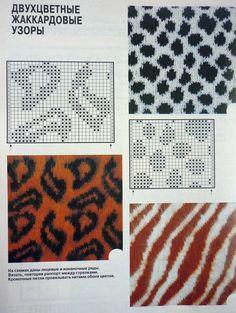 Materiales gráficos Gaby: Patrones jacquard animal print