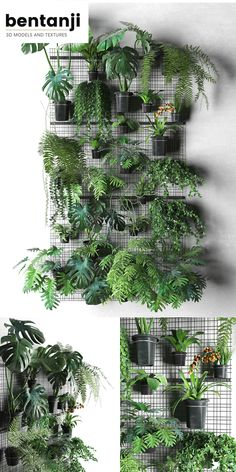 72 Most Amazing Indoor Plants Wall Garden Decoration Ideas - Page 14 of 72 - Diaror Diary garden wall hanging plants 72 Most Amazing Indoor Plants Wall Garden Decoration Ideas - Page 14 of 72 - Diaror Diary