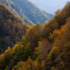 Pyrenees - Arán valley, Lleida, Spain