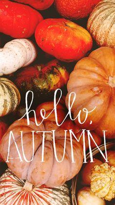 Hello September Autumn Fox iPhone Lock Wallpaper @PanPins ...