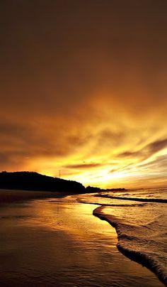 ~ golden sunset ~