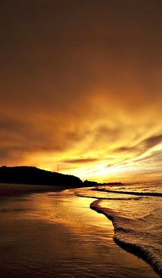 ~ golden sunset ~