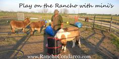 on the Rancho - More than a pony ride...