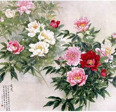 JP: Chinese painting - Peonies in Spring Chinese Painting Flowers, Japanese Painting, Japanese Art, Asian Flowers, Chinese Flowers, Art Floral, Peony Flower, Flower Art, National Art Museum