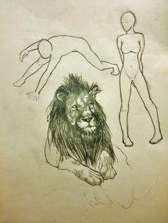 Lion. -.-