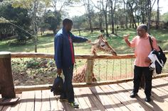 Kenyan wildlife: Baba Courtney still wasn't having any of it with the giraffe...