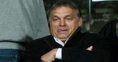 orbán elmebeteg - Google-keresés Humor, Google, Humour, Funny Photos, Funny Humor, Comedy, Lifting Humor, Jokes