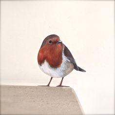 Image of Roberta Robin ~ Wall decal Vinyl Wall Stickers, Wall Decal, Window Decals, Wall Murals, Wall Art Decor, Wall Transfers, Bird Template, Bird Drawings, Pretty Art