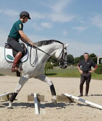 Trot poles in a semi circle -- this would be a really great exercise to do with Max.