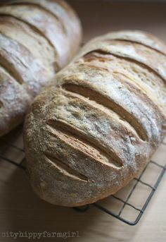 Simple Everyday Sourdough Bread Recipe on City Hippy Farmgirl at http ...