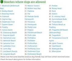 A list of beaches where dogs are allowed and a list of beaches with restrictions. Devon Holidays, Devon Cottages, Devon Devon, Outside Dogs, Dog Friendly Holidays, Stone Barns, Two Dogs, Cottage Design, Dog Friends