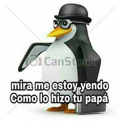 Love Memes Funny, Funny Spanish Memes, Stupid Memes, Best Memes, Dankest Memes, Pingu Memes, Bts Meme Faces, Club Penguin, Internet Friends