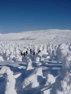 Randonnée Alpine à Raquette ~ Chic Choc @ Gaspésie, Québec Snow Fun, Visit Canada, Cross Country Skiing, Outdoor Adventures, Canada Travel, Homeland, Trekking, Winter Wonderland, Wilderness